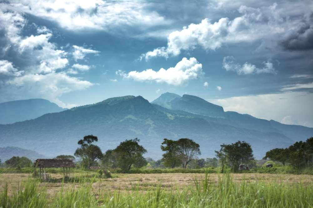 Природа и Экология Шри-Ланки