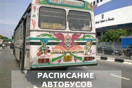 расписание автобусов на шри-ланке