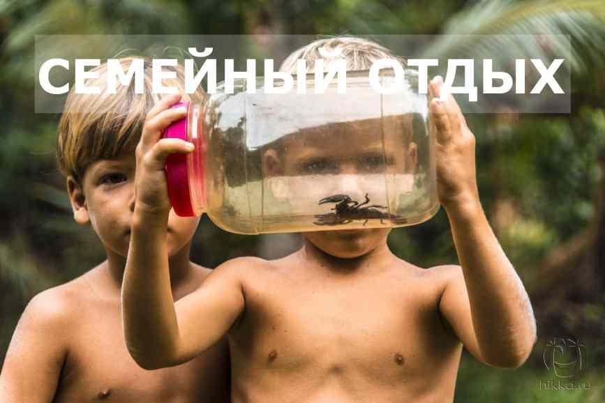семейный отдых на Шри-Ланке скорпион
